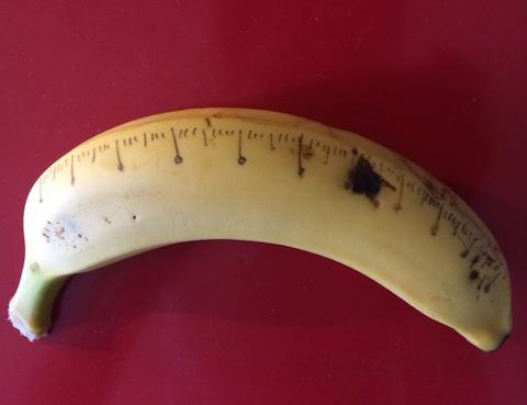 banana-scale1